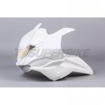 Frontal fibra de vidrio TF SUPERBIKE BMW S1000RR '19>