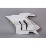 Lateral izquierdo fibra de vidrio TF SUPERBIKE Ducati Panigale V4R '19>